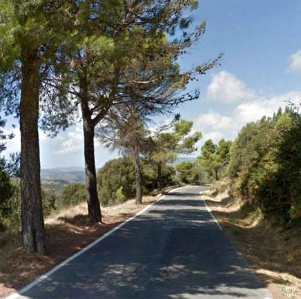 actualidad_carretera